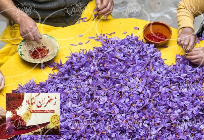 قیمت 1 کیلو زعفران ناب گناباد
