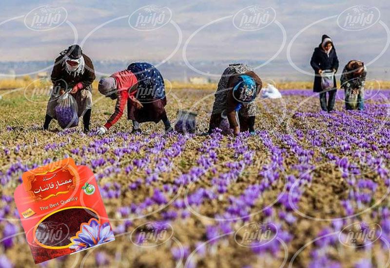 فروش پودر زعفران قاینات 40 گرمی
